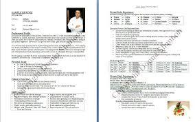 resume samples professional summary professional summary resume example examples of resumes