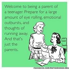 Teenagers Meme - best 25 parenting humor teenagers ideas on pinterest parenting