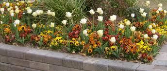 Spring Garden Ideas Garden Design Garden Design With Telegraph Gardenshop Buy Spring