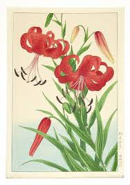 Japanese Flower Artwork - 422 best lily images on pinterest flowers lily and painting
