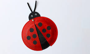 easy craft how to make a paper plate ladybird youtube