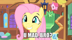 Pony Memes - my little pony friendship is magic memes wiki fandom powered