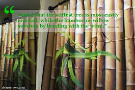 vivs reviews refreshing the bathroom with a bamboo shower curtain