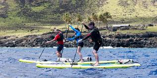 Water Challenge Explained Paddle Boarders Complete Charity Challenge Rockinghorse News