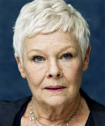 judi dench hairstyle front and back of head judi dench short straight casual hairstyle