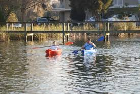 Crystal River Florida Map by Kayaking Crystal River Kayak Rentals Kayaks For Rent Crystal River