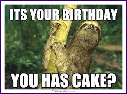 Funny Memes Animals - happy birthday memes with funny cats dogs and cute animals
