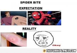 Funny Spider Meme - spider bite expectation vs reality thefunnyplanet funny