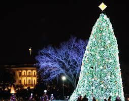 the white house s led illuminated national tree is