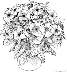 flowers pictures adults coloring pages printable