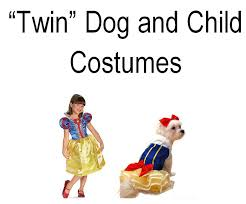 Puppy Halloween Costumes Puppy Halloween Costumes Family Finds Fun