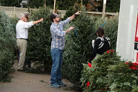 local tree sales begin after thanksgiving arlnow