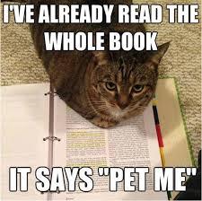 Cats Meme - 9 magnificent meme monday cat memes petcentric by purina