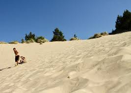 Honeyman State Park Map by Honeyman State Park Oregon Sand Dunes A Whole Story