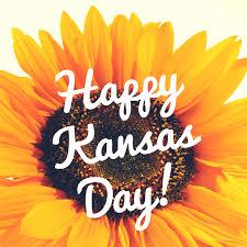 salina ks sunflower field by kansas state university kansas day harvey county