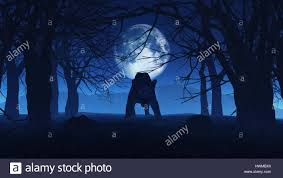 3d render of an evil black panther in spooky halloween woods stock
