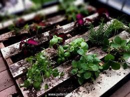 117 best pallets garden images on pinterest pallet gardening