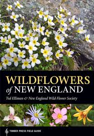 illinois native plant guide wildflowers of new england timber press field guide from timber press