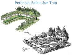 preparing the ground for a permaculture garden permaculture