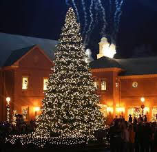 Outdoor Christmas Decorations Ottawa by Multi Coloured Christmas Tree Lights Christmas Lights Decoration