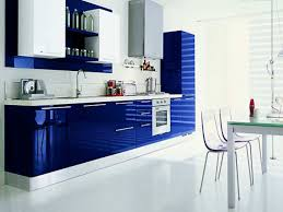 blue kitchen decorating ideas with purple color combination