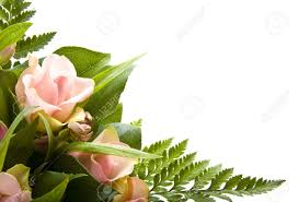 bunch of flowers images u0026 stock pictures royalty free bunch of