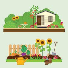 vegetable garden clip art vector images u0026 illustrations istock