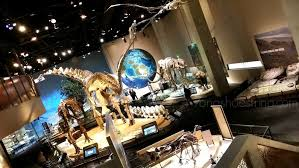 perot museum in dallas