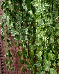 ivy home decor 2x artificial ivy vine garland plant fake foliage watermelon leaf