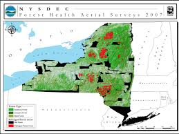 Map Of State Of New York by Trail Conference Maps On Apple And Android Devices New Yorknew