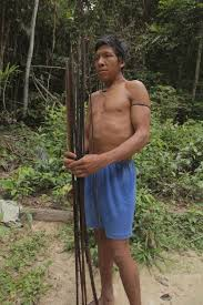 Awa the awa faces of a threatened tribe indigenous people