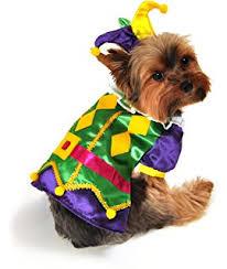 mardi gras jester ribbon dog medium mardi gras jester ribbon dog collar by