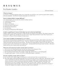 Sample Resume For Leadership Position by Resume Samples For Team Leader Position Resume For Your Job Images