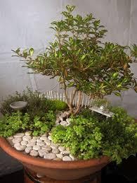 Best 25 Miniatures Ideas On by Best 25 Miniature Gardens Ideas On Pinterest Fairy Terrarium