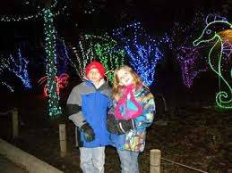 columbus zoo christmas lights visit a holiday light show at a local zoo