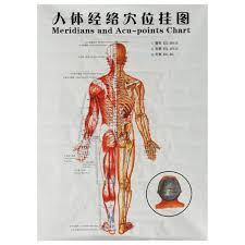 Nerve Map Chinese Medicine Body Acupuncture Points Meridians And Acupoints