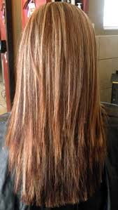 back of the hair long layers long layer hair cut long layered haircuts back view 09 20 best