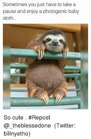 Cute Sloth Meme - 25 best memes about baby sloths baby sloths memes
