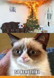 Grumpy Cat Meme Happy - mean dude have you ever heard of a fucking meme you idiot and