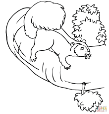 squirrel on a tree coloring page free printable coloring pages