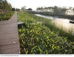 terraced landscape design best images about terraced garden on