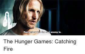 25 best memes about the hunger games catching fire the hunger