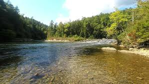 South Carolina wild swimming images The chattooga wild and scenic river at woodall shoals georgia jpg