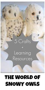 the world of snowy owls 5 craft activities for kids u2013 green acorns