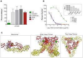 a neutralizing monoclonal antibody targeting the acid sensitive