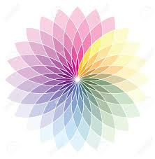 Pink Color Wheel by Flower Shape Color Wheel Royalty Free Cliparts Vectors And Stock