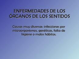 significado de imagenes sensoriales wikipedia enfermedades órganos de los sentidos