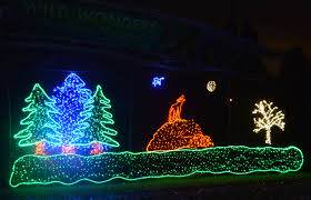 Zoo Lights Tacoma Wa by Point Defiance Zoolights The Whimsikal Wolf