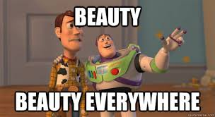 Meme Beauty - beauty beauty everywhere toy story everywhere quickmeme