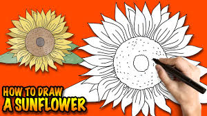 how to draw a sunflower easy step by step drawing lessons for